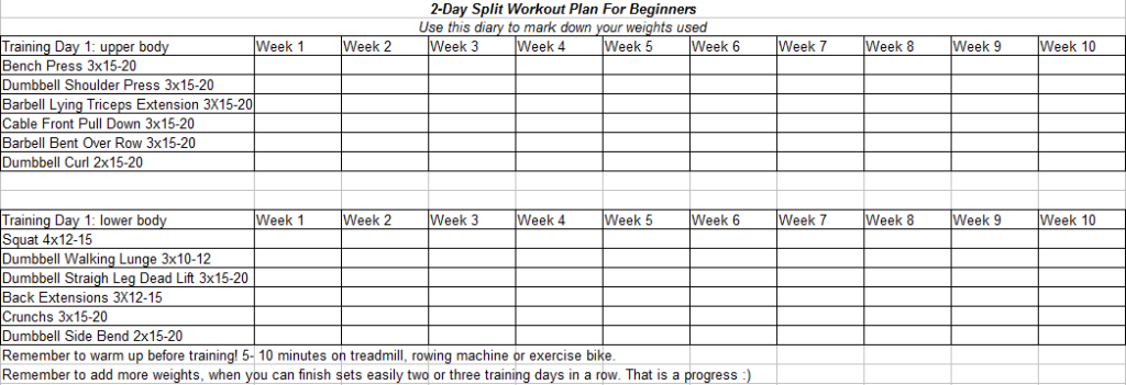 2 Day Split Workout Plan For Beginners