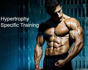 HST - Hypertrophy-Specific Training — My Workout Plans